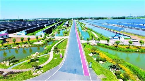 青岛一特色小镇凭太阳能闻名全国